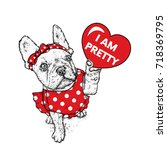 beautiful dog in a dress and...   Shutterstock .eps vector #718369795