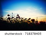 beautiful field of red poppies... | Shutterstock . vector #718378405