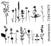 vector set of wild plants... | Shutterstock .eps vector #718475875