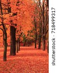 path in the autumn park as... | Shutterstock . vector #718499317