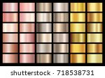 gold rose  bronze and gold foil ... | Shutterstock .eps vector #718538731