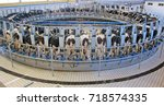 automatic milking system  ... | Shutterstock . vector #718574335