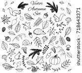 Hand Drawn Set Of Vector Autum...