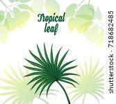 tropical plants. vector image ... | Shutterstock .eps vector #718682485