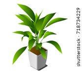 vector isometric plant in white ... | Shutterstock .eps vector #718734229