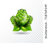 isolated  hop illustration on... | Shutterstock . vector #718769149