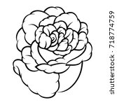 flower rose  black and white.... | Shutterstock .eps vector #718774759
