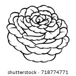 flower rose  black and white.... | Shutterstock .eps vector #718774771
