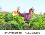 female farmer. agriculture and... | Shutterstock . vector #718788391