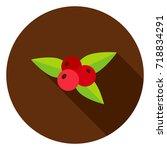 rowanberry circle icon. vector...   Shutterstock .eps vector #718834291