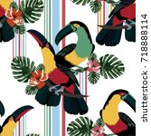 exotic seamless pattern with... | Shutterstock .eps vector #718888114