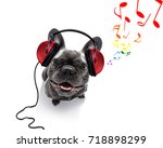 Small photo of cool dj french bulldog dog listening or singing to music with headphones and mp3 player, notes all around, isolated on white background
