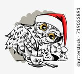 cute christmas owl with cup of... | Shutterstock .eps vector #719023891