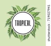 palms tree frame | Shutterstock .eps vector #719027941