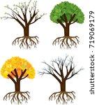 tree at four seasons  spring ... | Shutterstock .eps vector #719069179