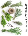 drying fresh herbs and greenery ... | Shutterstock . vector #719104447