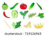 vegetables and herb kitchen... | Shutterstock .eps vector #719126965