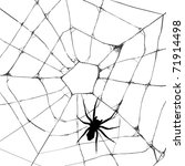 grunge web spider over white...   Shutterstock . vector #71914498