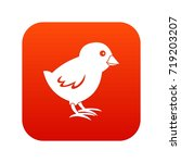 chick icon digital red for any... | Shutterstock .eps vector #719203207