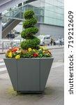 beautiful flower pot with green ... | Shutterstock . vector #719212609