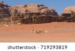 bedouin riding camel in wadi... | Shutterstock . vector #719293819