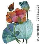 original watercolor painting of ... | Shutterstock . vector #719311129