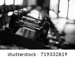 dumbbells in gym. close up many ... | Shutterstock . vector #719332819