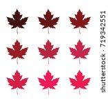 maple leaves | Shutterstock .eps vector #719342551