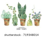 watercolor green plants in pots.... | Shutterstock . vector #719348014
