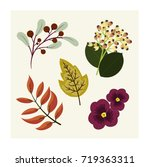 pretty hand drawn flowers and... | Shutterstock .eps vector #719363311