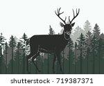 silhouette illustration of a... | Shutterstock .eps vector #719387371