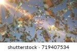 100 australian dollar  aud  ... | Shutterstock . vector #719407534