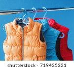 family concept of down vest... | Shutterstock . vector #719425321