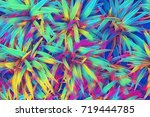 tropical leaf top view.... | Shutterstock . vector #719444785