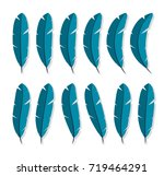 feathers collection icon flat... | Shutterstock . vector #719464291