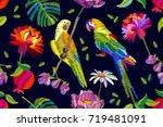 autumn chrysanthemums garden.... | Shutterstock .eps vector #719481091