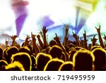 cheering crowd at a rock concert | Shutterstock . vector #719495959
