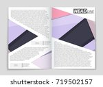 abstract vector layout... | Shutterstock .eps vector #719502157