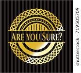 are you sure  golden emblem or... | Shutterstock .eps vector #719505709
