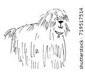 shaggy dog vector hand drawn... | Shutterstock .eps vector #719517514