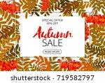 horizontal autumn sale banner.... | Shutterstock . vector #719582797