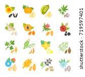 set vector illustration of... | Shutterstock .eps vector #719597401