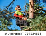 lumberjack with saw and harness ... | Shutterstock . vector #719634895