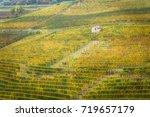 vineyards in autumn  barolo ... | Shutterstock . vector #719657179