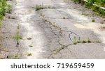 green grass sprouted through... | Shutterstock . vector #719659459