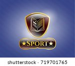 shiny emblem with book icon... | Shutterstock .eps vector #719701765
