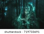 high contrast image of a scary... | Shutterstock . vector #719733691
