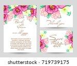vintage delicate invitation... | Shutterstock .eps vector #719739175