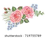 watercolor composition of... | Shutterstock . vector #719755789
