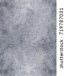 mink fur texture of light  gray ... | Shutterstock . vector #719787031